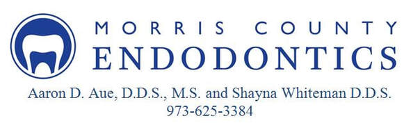 MORRIS COUNTY ENDODONTICS AARON D AUE DDS, MS AND SHAYNA WHITEMAN DDS 973-625-3384